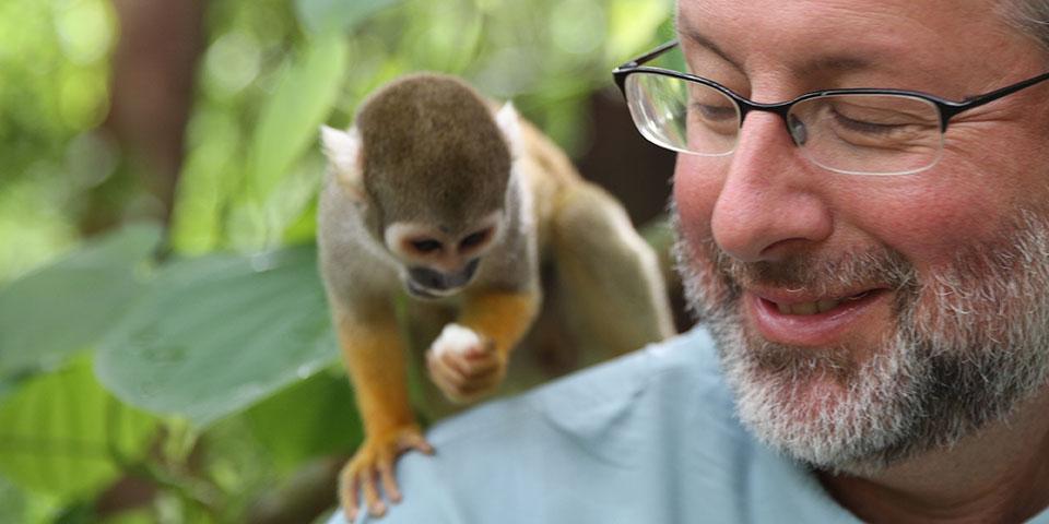 your-inner-monkey