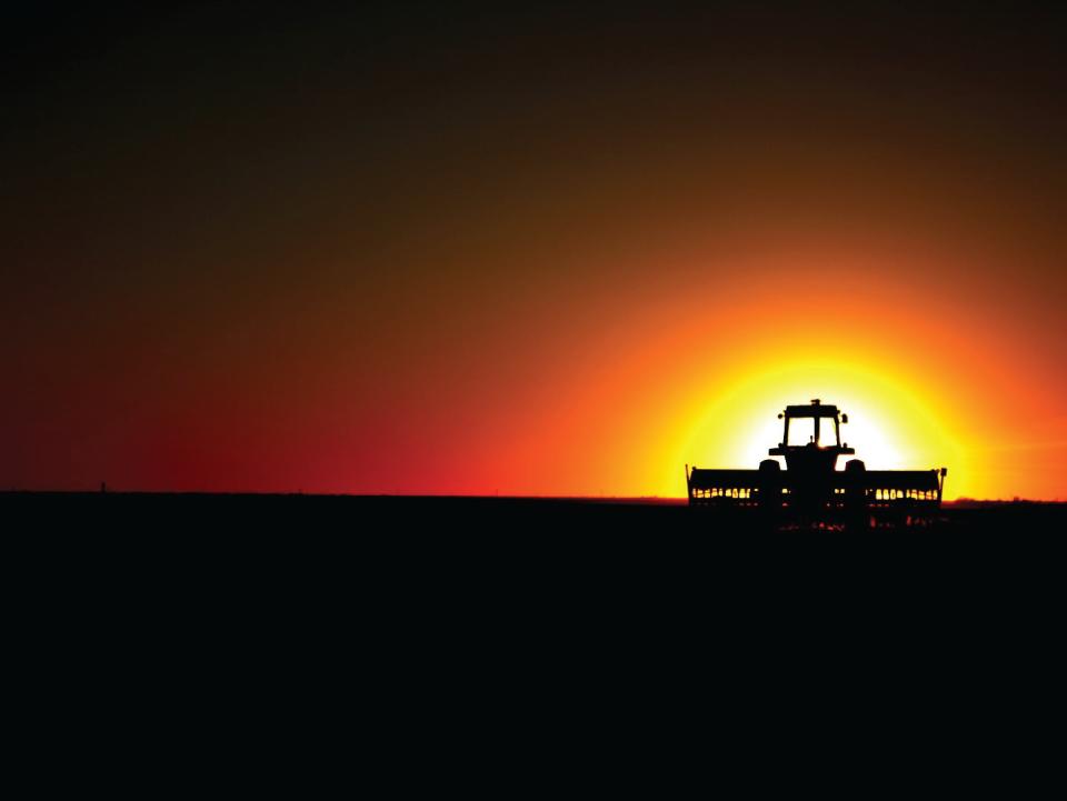 justine_renee-texan_sunset