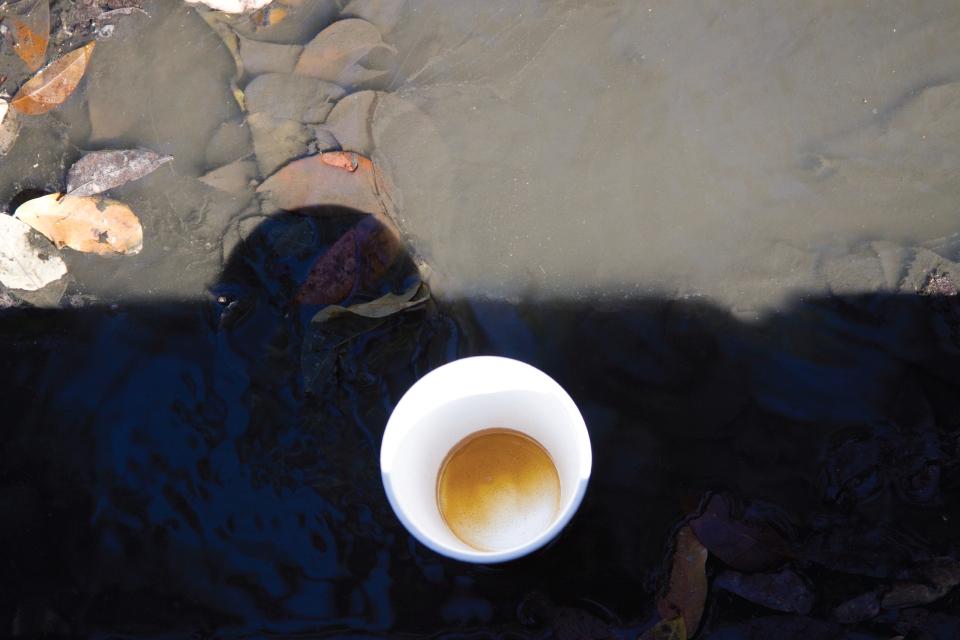 lyea_shine-chardon_coffee