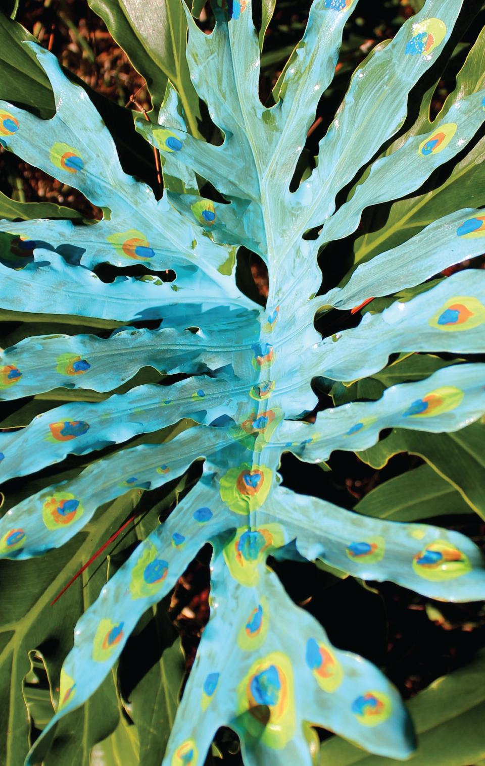 diane_thompson_cortese-peacock_garden