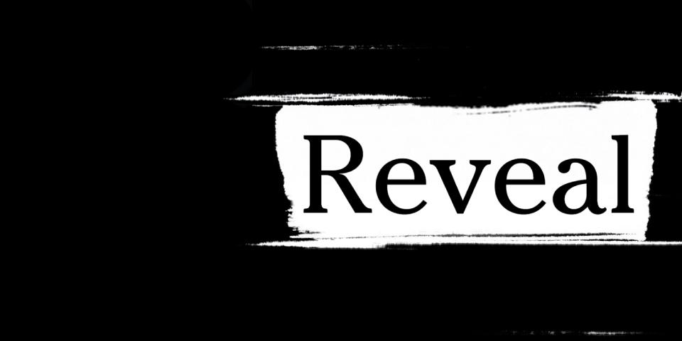 reveal_slider_960x480_01