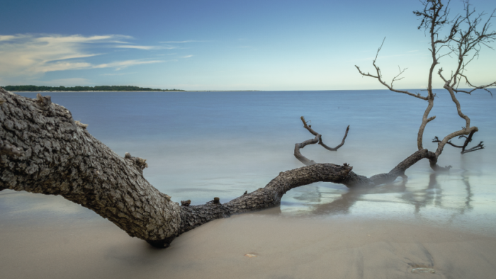 marcelo_murillo-reaching_out_960x480