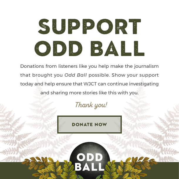 Support Odd Ball. Donations from listeners like you help make the journalism that brought you Odd Ball possible. Show your support today and help ensure that WJCT can continue investigating and sharing more stories like this with you. Thank you!