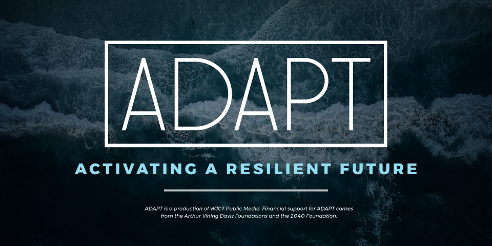 ADAPT: Activating a Resilient Future